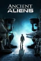 Alien Theory en streaming