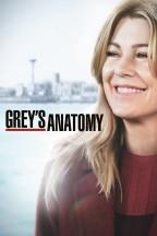 Grey's Anatomy en streaming