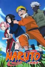 Naruto en streaming